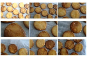 Lemon Sable Collage