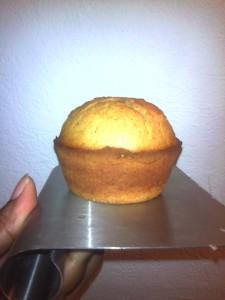 butternut squash muffin